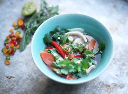 Amelia Freer's Spicy Thai Chicken Broth