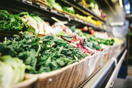 Food Sustainability: A discussion of the EAT-Lancet report